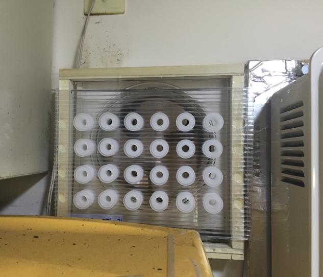 うるさい 換気扇 の 音 が 換気扇がうるさい…音の種類から考えられる3つの原因とその対策法